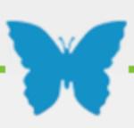 Harmony Hospice butterfly